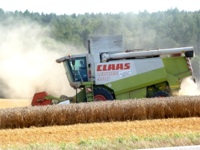 Landwirtschaft (Ullrichs Putenhof)